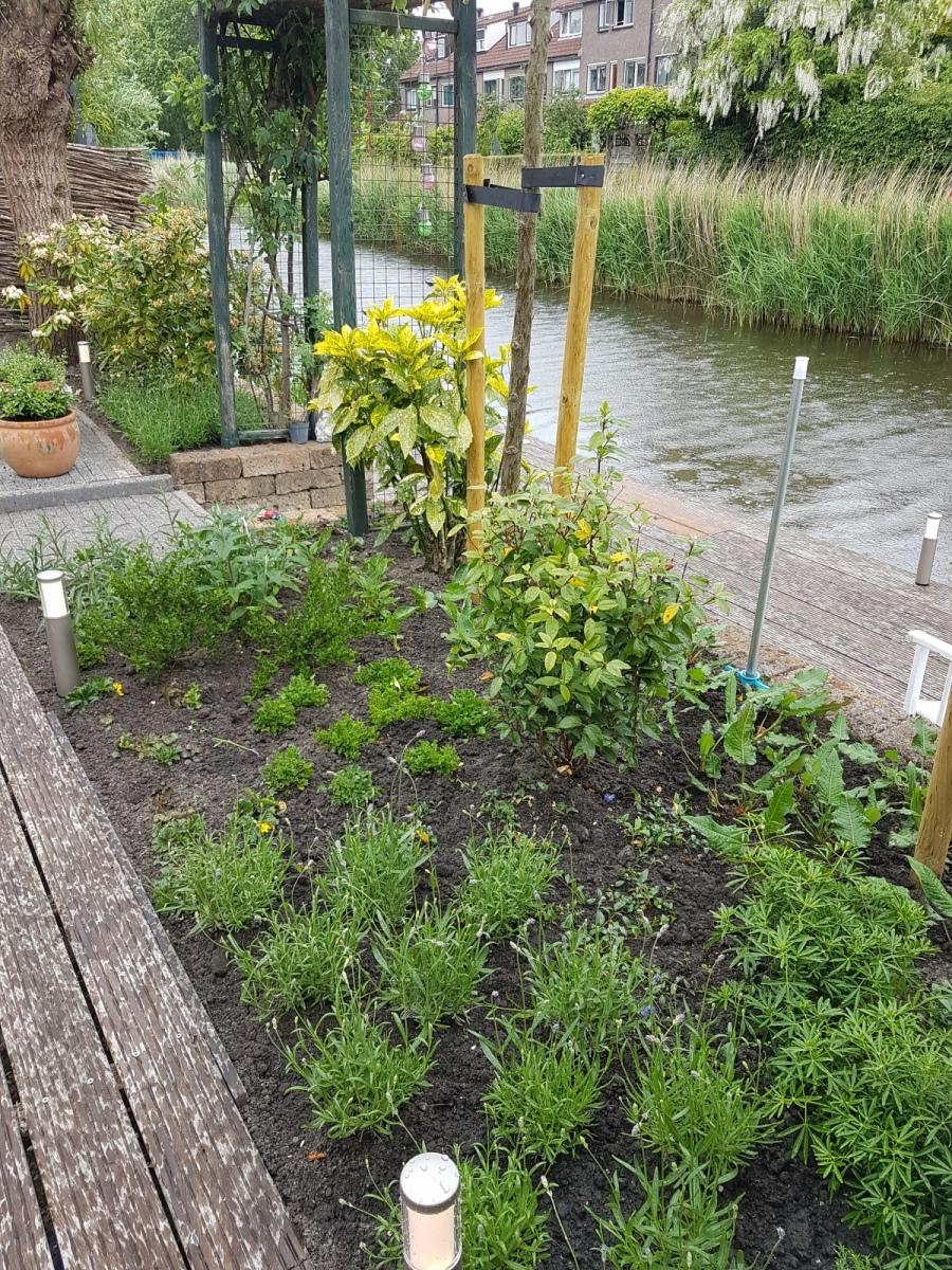 Tuinrenovatie Zoetermeer